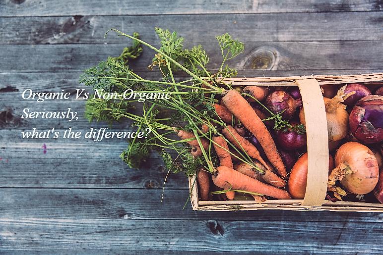a basket of fresh organic vegetables